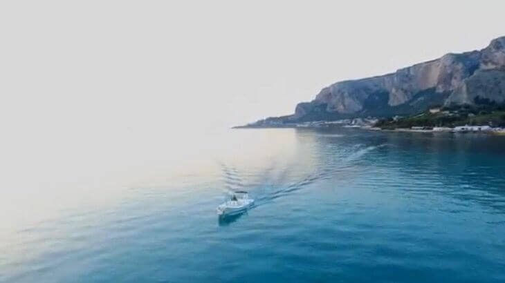 Sealife Palermo - Foto 45